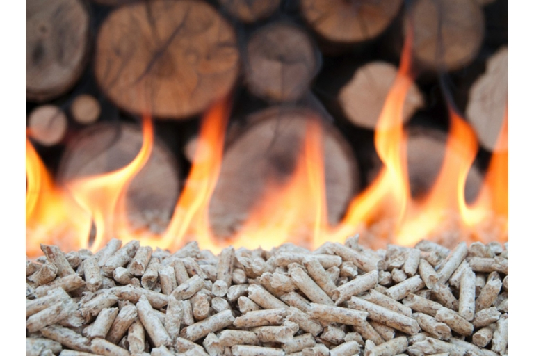Hout- of pellet verwarming ?
